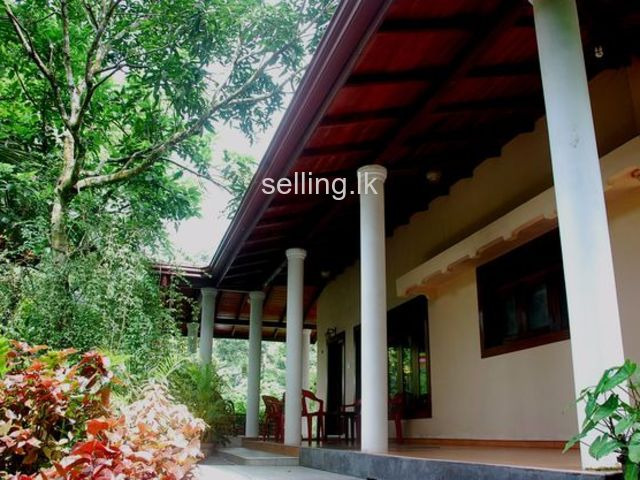Fully Furnished House in Pilimathalawa with 34 perches Land - Residential or Commercial Use
