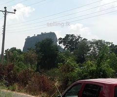 Land near ancient Sigiriya - සීගිරි පව්ව පේන මානයෙන් ඉඩමක්