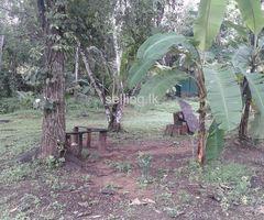 kadawatha land for sale