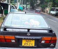 Nissan sunny fb 14