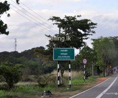 Land for sale Galgamuwa