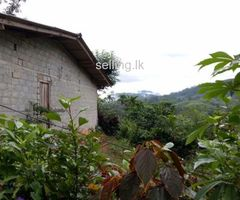 House for sale in Nawalapitiya