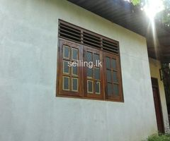 house for rent in palawatta