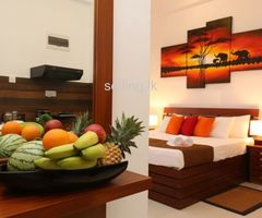 Serviced Apartment on Rent Basis