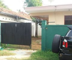 02 Bed Room Spacious House for Rent at Panadura