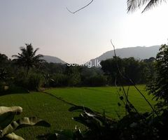 Mathale land for sale