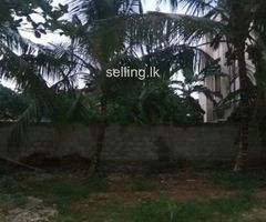 Maharagama 37.4 land sale
