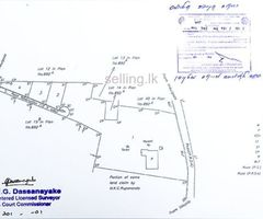 Lland for sale in Gampaha