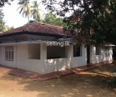 House Rent or Lease in Anuradhapura
