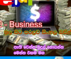 e business sinhala