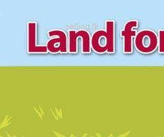 land for sale mahiyangana city