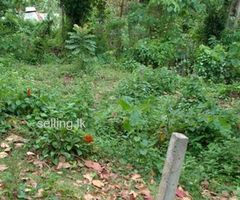Sale for valuable Land in Matale Aluvihare