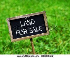 Land for sale in Badulla veneethagma