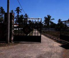 Luxury Lifestyle in Negombo