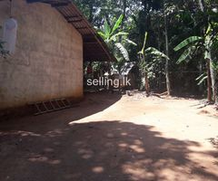 Land and house for sale in Molagoda