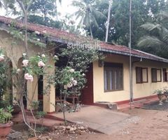 Land and House for Sale in Giriulla