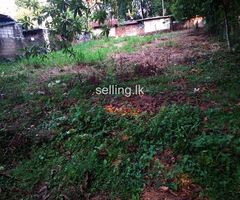 Land for sale in yakkala near   Colombo kandy road