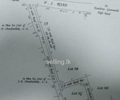 Kandana 10p. Land for sale