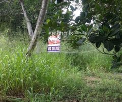 Land for sale in nittambuwa