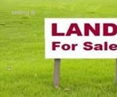 land for sale in Binthenna - Badulla