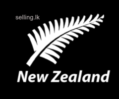 Visit visa to new Zealand