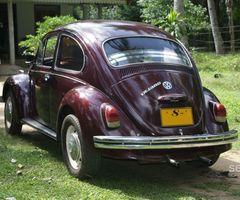 volkswagen beetle (kanemail)