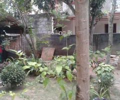 Valueble House and Land for sale in Anuradhapura town