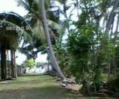 Land with a house for sale (Near to the beach)