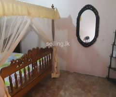 Room Rent for Executive in Kelaniya