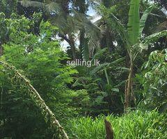 Galle Karapitiya Valuable land