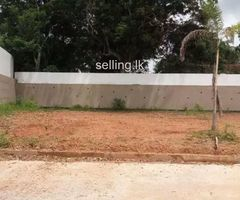 Land for Immediate Sale