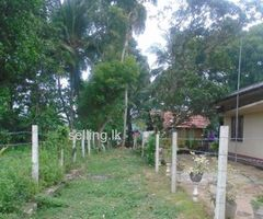 Land Sale in Kurana, Negombo