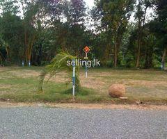 Land for sale in kaduwela / Ranala