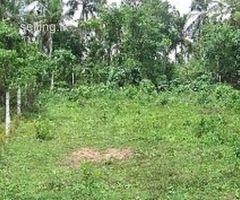 Ganemulla Land for Sale