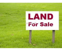 Land for sale in Anuradapura