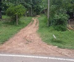 Land at Gampaha Kumarathunga Mawatha