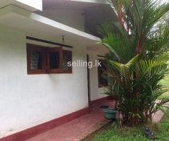 Valuable house and land in galle
