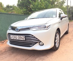 Brand new Toyota axio for rent