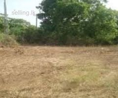 land for sell in Tangalla