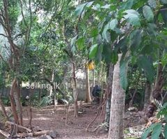 Residential Land for Immediate Sale at Panadura
