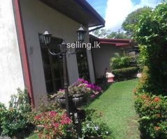 HOUSE WITH 13.5 LAND FOR SALE IN RATHMALANA