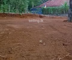 Land for sale In Mirigama (Per 15)