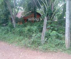 Land for sale in Ganemulla Road