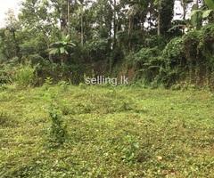 Land for sale in Madawala Bazaar