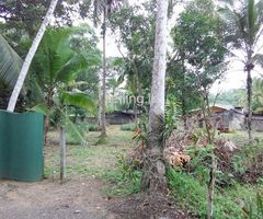 Great Land for sale Homagama