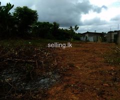 Land for sale in Paiyagala - Quick sale