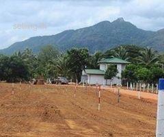 land in Dambulla