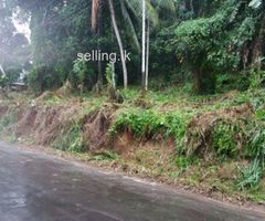 Land for sale Danthure _ pilimathalawa