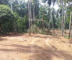 LAND - FOR SALE-DELGODA