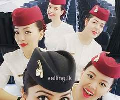 airline ticketing booking